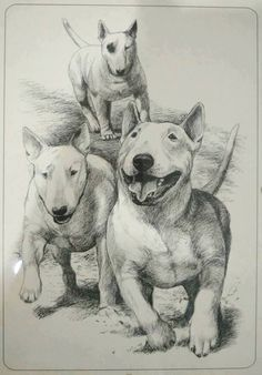 Amazing rendering.   I can hear these precious dogs running right now!