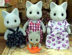 EB Grey Cats
