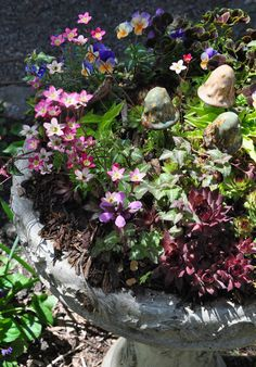 3 beautiful birdbath planters, gardening, outdoor living, wildlife animals, My birdbath planter in my own garden See more here