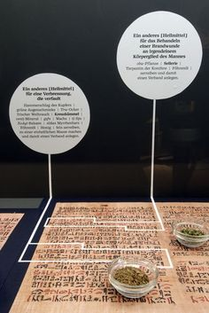 Exhibición sobre Especias en el Lokschuppen, Rosenheim, Alemania