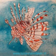 Day 3. The beautiful and highly visible lionfish uses venomous barbs around its body as a defence against predators.  #inktober #poisonfish #illustration #susiart #inktober2017 #lionfish