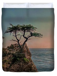 Cypress Duvet Cover featuring the photograph Photogenic Tree by Hanny Heim , Snowbird Photography #tree #california #ocean