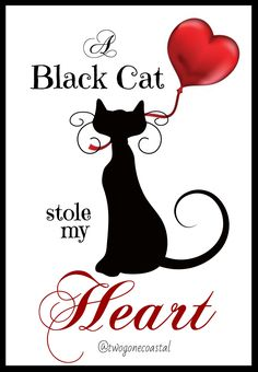 Black Cat Art, Black Cats, Black Kitty, Dog Poster, Cat Posters, Crazy Cat Lady, Crazy Cats, Cat Template, Cute Animals Images