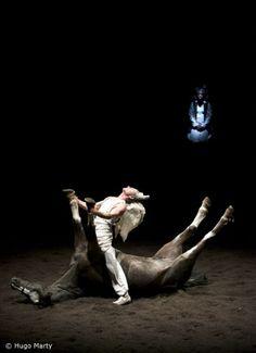 Théâtre Equestre Zingaro - On achève bien les anges (élégies)