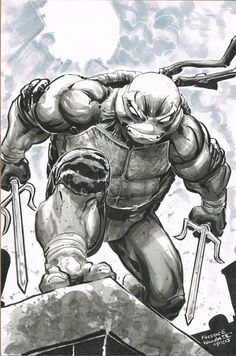 Teenage Mutant Ninja Turtles - Raphael by Freddie E. Williams