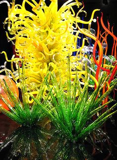 chihuly - .