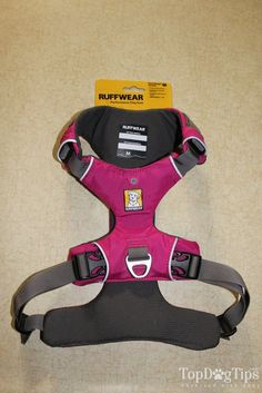 What Is the Best Dog Harness Review