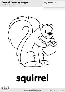 Free Squirrel Coloring Page From Super Simple Learning Tons Of Animal Worksheets And Flashcards