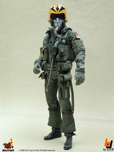 tomcat pilot - - Yahoo Image Search Results