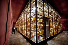 The jars were previously stored in various parts of the building but have now...