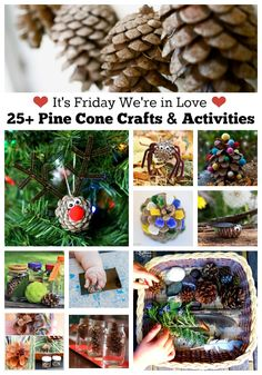 25+ Pine cone crafts & activities - It's Friday and we're in LOVE with pine cones! Each week, one of our 8 co-hosts has been featuring the ideas we LOVE from that week's theme. Come see our favorites and join the party.