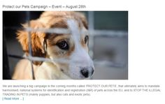 PROTECT OUR PETS Friday 28 August - Brussels Belgium / #Act4Pets