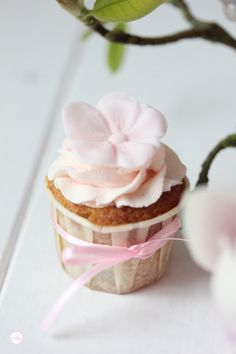 Lisbeths Cupcakes  Rhabarber Cupcakes mit Ingwer Sahne