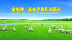 """The Last Days 