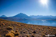 Laguna Miscanti - Lagunas Altiplânicas, Chile