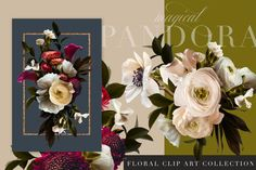 Lovely roses, anemones, strawflowers, ranunculus, and others were photographed to create this beautiful clip art set that really is magical. Website Themes, Rose Design, Blog Design, Dark Backgrounds, Paper Background, Overlays, Anemones, Ranunculus, Floral Wreath