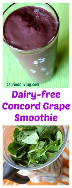 Dairy-free Concord Grape Smoothie (with spinach) from Carrie on Living