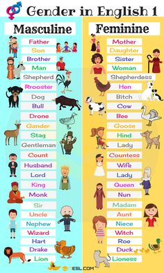Gender of Nouns Masculine and Feminine List in English 7 E S L Learning English For Kids, Teaching English Grammar, English Lessons For Kids, English Writing Skills, Kids English, English Vocabulary Words, Learn English Words, English Language Learning, English Study