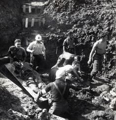 De nombreux prisonniers sont assassinés par la Gestapo sur les terrains d'aviation de #Bron, principalement des internés juifs de Montluc. Après la #libération de Bron, 5 charniers sont découverts sur les terrains de l'aéroport d'où 900 corps sont exhumés. La progression des alliés met en péril les plans de l'occupant qui multiplie les exactions et les actes de répression et d'extermination #numelyo #WW2 #2GM #occupation