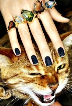Meow | The go-to autumn shade: navy blue matte with a few swirls of discrete glitter and a fine silver line at the bottom to finish. Pair with loads of heavy jewelry and maybe some exotic furs.
