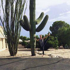Victoria, an instructor at The Bar Method Fresno, stays limber in Arizona. #WhereDoYouBar?