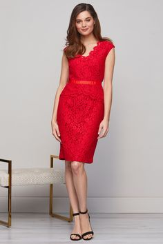 Buy gina baccioni from the Next UK online shop Lace Peplum Dress, Neck Pattern, Types Of Sleeves, Formal Dresses, Red, Cotton, Stuff To Buy, Clothes, Shopping