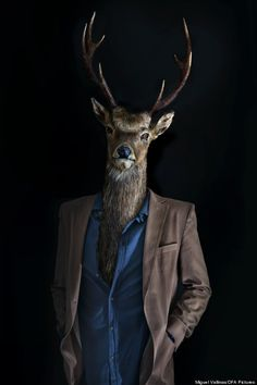 Fashionably Dressed Animals by Miguel Vallinas