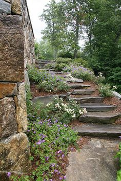 Stone steps. Ideal but expensive. Where do you get such large flat stones?