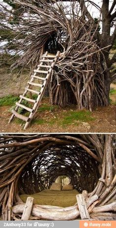 More of a tree 'nest' than a tree house!