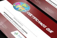 Certificado Acampamento Integrando Origens (2013)