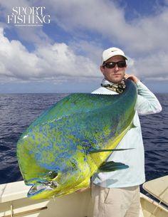 Fishing - Nice Dorado ;)