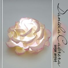 Illuminate your cakes with roses!! by daniela cabrera