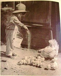 vintage everyday: 17 Interesting Vintage Photos of Children Feeding Animals