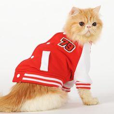 Мода бейсбол спорт кошка одежды равномерное пиджаки маленький щенок собака кошка пальто весна осень XS sml XL