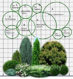 Ландшафтный Дизайн, Кактус Растения, Садовые Растения, Комнатные Растения, Дизайн Цветочного Сада, Декоративные Травы, Клумбы, Озеленение, Ландшафт
