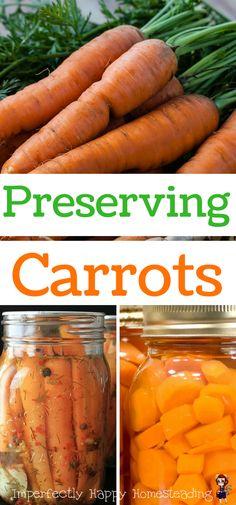 Preserving Carrots from Your Vegetable Garden