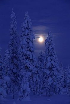 Beautiful Moon in Kuusamo, Finland Beautiful Moon, Beautiful World, Beautiful Places, Beautiful Pictures, Winter Szenen, Winter Time, Shoot The Moon, All Nature, Snow Scenes