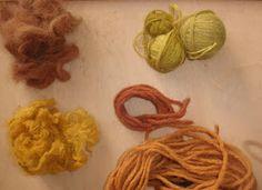 Krydderuglen: Plantefarver -- Plant Dye