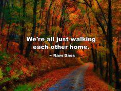 """We're all just walking each other home"" - Ram Dass  via Sun Gazing"