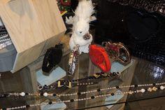 Lausanne, Your Pet, Pets, Shop, Animals, Animales, Animaux, Animal Memes, Animal