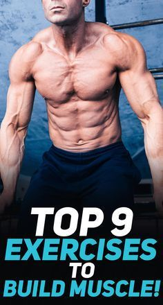 Healthy Fitness plans for great health - Truly effective but sensible routine to rid 20 pounds easy fitness tips gym Super solid fitness suggestions posted on this Very inspiring day 20181229 , Reference Fitness idea reference 2719334795 Gym Workouts For Men, Easy Workouts, At Home Workouts, Workout Tips, Workout Motivation, Muscle Training, Weight Training, Body Fitness, Crossfit