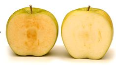 Una empresa canadiense testea en ciudadanos de EE.UU. manzanas que no se oxidan - https://infouno.cl/una-empresa-canadiense-testea-en-ciudadanos-de-ee-uu-manzanas-que-no-se-oxidan/