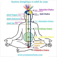 Enseignement et explications sur les 7 Chakras du corps humain : leurs fonctionnements, vibrations, énergies et leurs influences au quotidien. Amazing Secret Discovered by Middle-Aged Construction Worker Releases Healing Energy Through The Palm of His Hands... Cures Diseases and Ailments Just By Touching Them... And Even Heals People Over Vast Distances... http://pure-reikihealing.blogspot.com?prod=QdmbtBH5