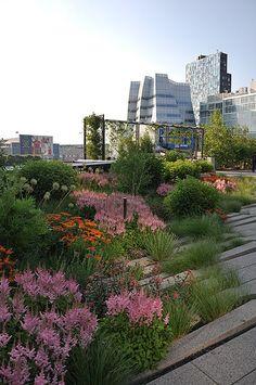 NYC High Line Park - urban garden, landscaping, roof garden, country . - NYC H. NYC High Line Pa