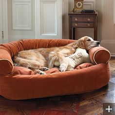 Seriously wish we could afford to get this for our Dog. I might get the pillow though!