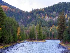 Yaak River in Western Montana near the North Idaho border
