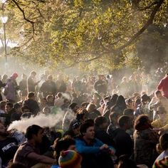The push to decriminalise recreational cannabis use appears to be gaining momentum.