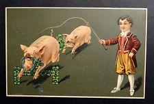 New Year Postcard c1907 BOY PIG TRAINER Pigs w/ Shamrocks HORSESHOE