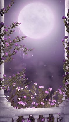 By Artist Unknown. Stunning Wallpapers, Beautiful Nature Wallpaper, Beautiful Moon, Pretty Wallpapers, Flower Phone Wallpaper, Galaxy Wallpaper, Cellphone Wallpaper, Scenery Wallpaper, Colorful Wallpaper