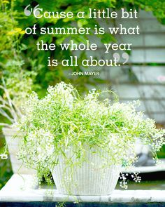"Inspirational quotes and sayings about summer:  ""'Cause a little bit of summer is what the whole  year is all about."" -John Mayer"